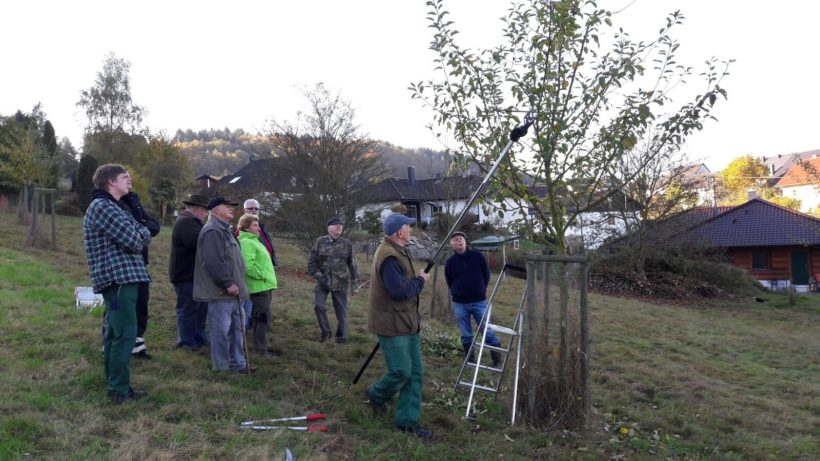 Baumschnittkurs vom Gartenbauverein