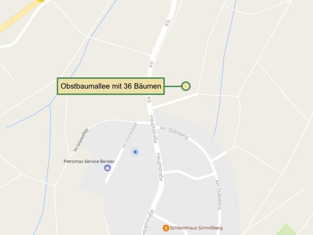 Bäume beschildert - Diese Karte zeigt, wo die Schilder und Bäume im Gemeindegebiet zu finden sind.