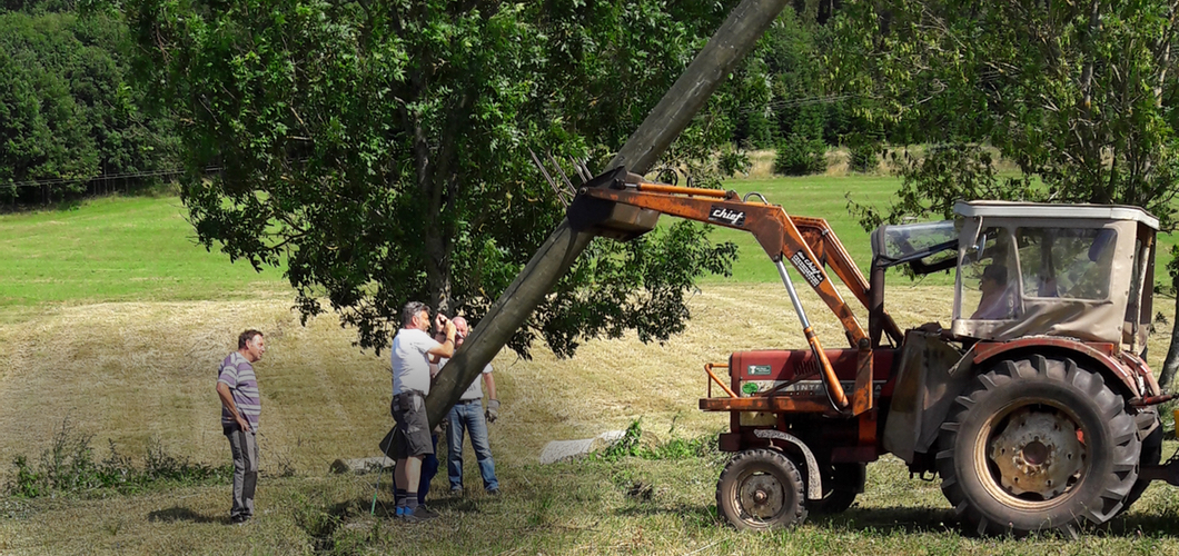 Bau der Vogelvoliere hat begonnen