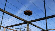 700 Meter Stahlseil werden gespannt