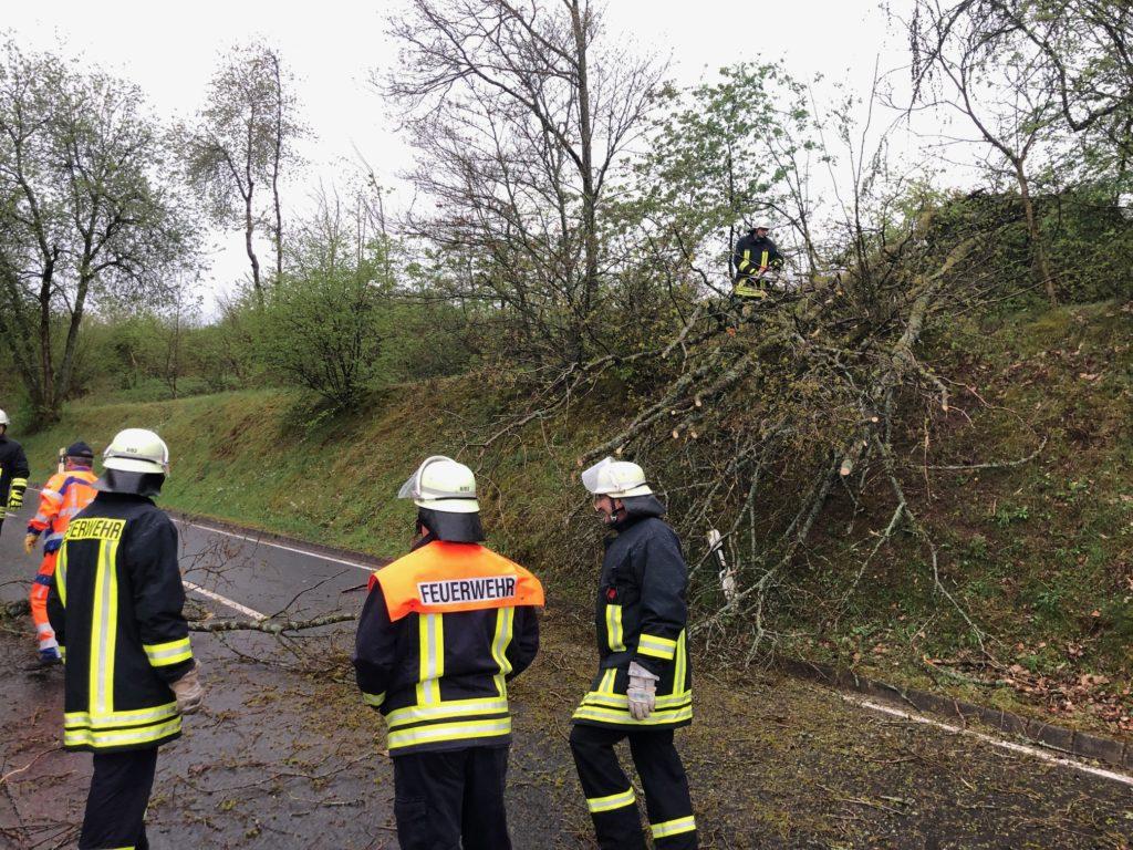 Unwetter: Umgestuerzter Baum versperrt Strasse
