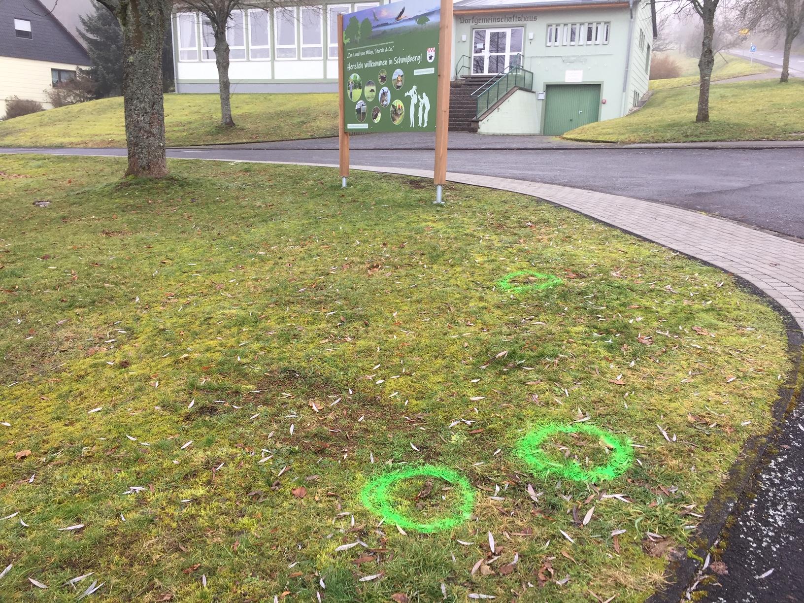 Die Hundescheiße in der Grünanlage