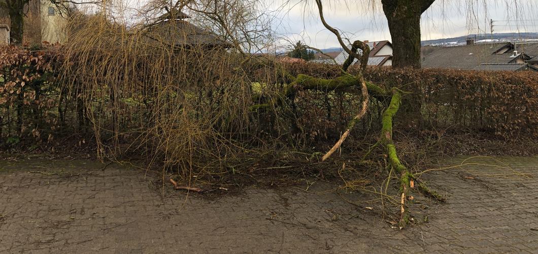 Sturmtief Sabine sorgt nur für kleine Schäden